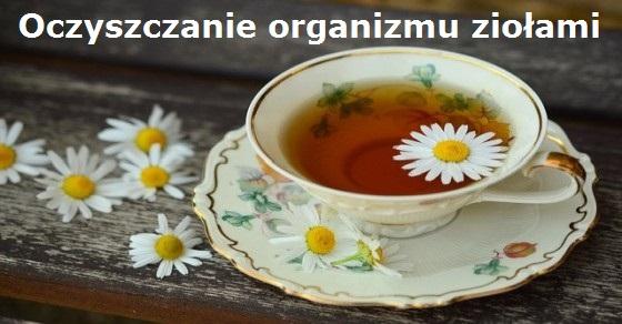 Oczyszczanie organizmu ziołami wyzwanie